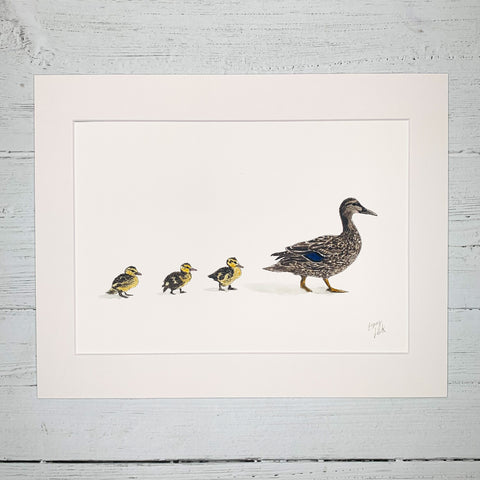 Mother & Baby Ducklings - Fine Art Print