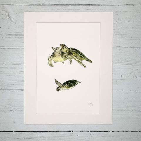 Turtle Family  - Fine Art Print