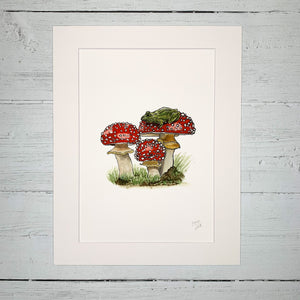 Toad On A Toadstool - Fine Art Print