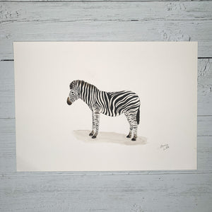 Zebra - Original (1 of 1)