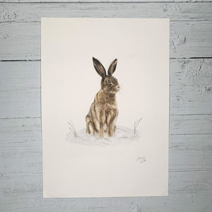 Winter Hare - Original (1 of 1)