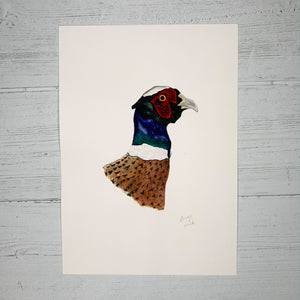 Pheasant - Original (1 of 1)
