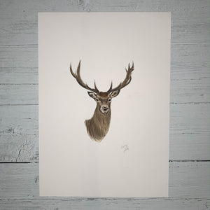 Stag - Original (1 of 1)
