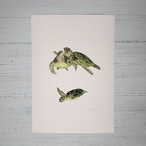 Turtle Family  - Original (1 of 1)