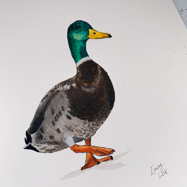 Duck - Original (1 of 1)
