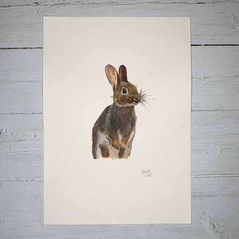 Rabbit - Original (1 of 1)