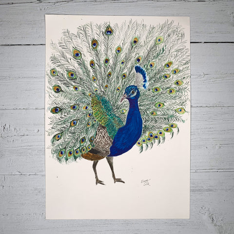 Peacock - Original (1 of 1)