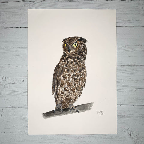Owl - Original (1 of 1)