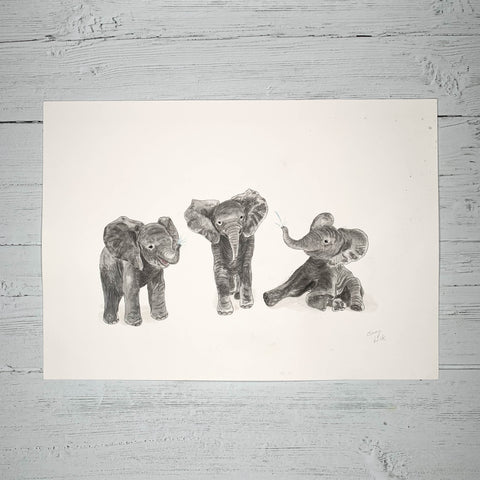 Baby Elephants - Original (1 of 1)