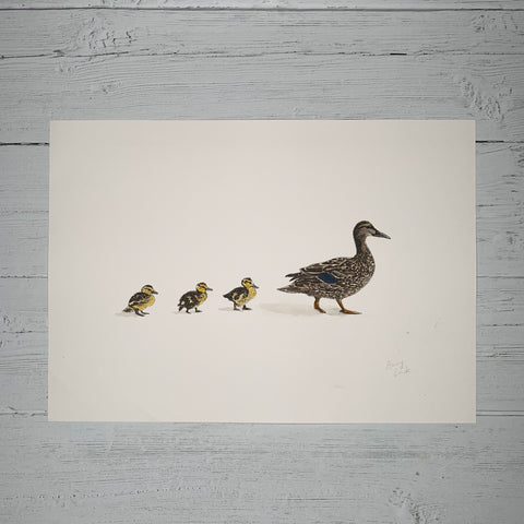 Mother & Baby Ducklings - Original (1 of 1)