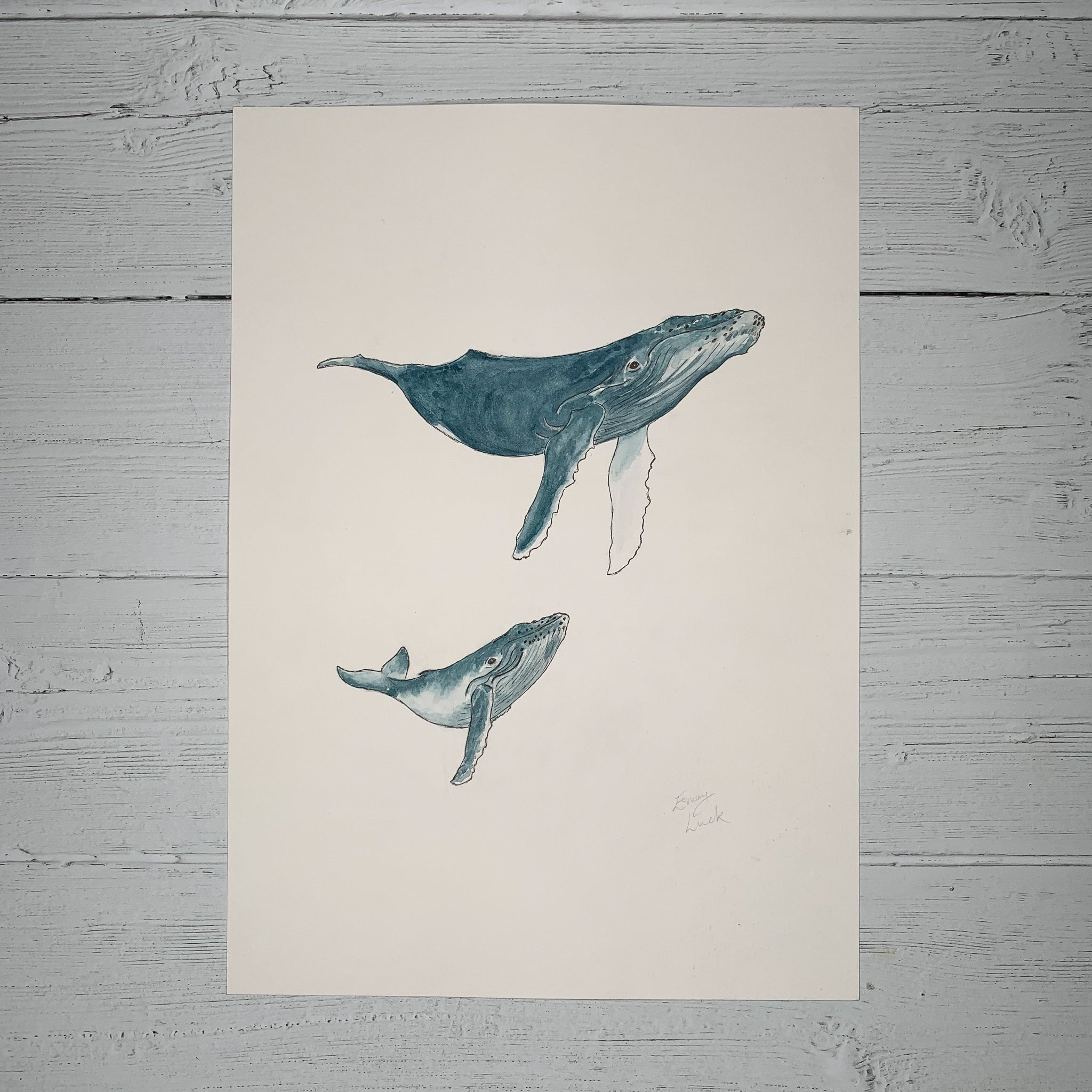 Mother & Baby Humpback Whales - Original (1 of 1)