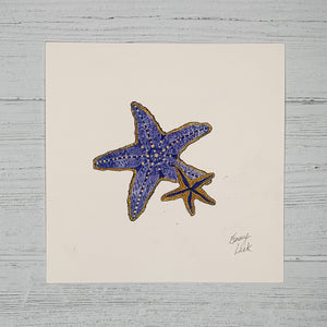 Starfish - Original (1 of 1)