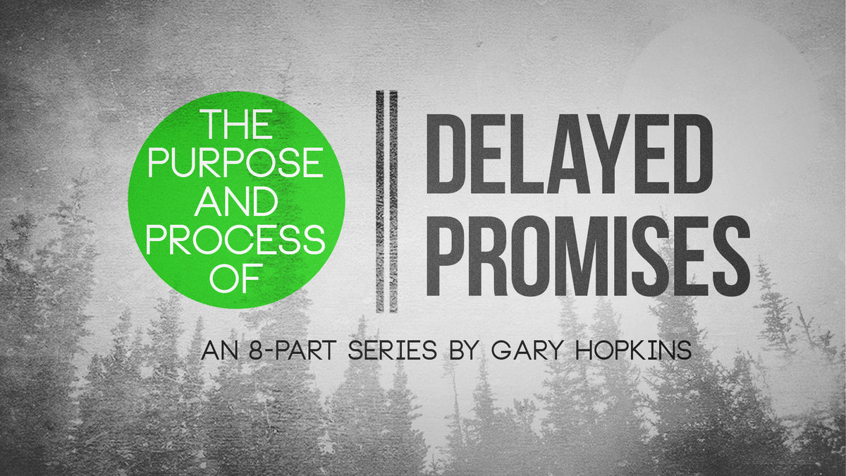 The Purpose and Process of Delayed Promises