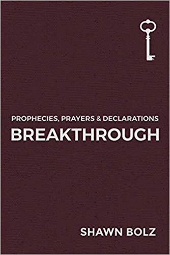 Breakthrough: Prophecies, Prayers & Declarations - Mission Store