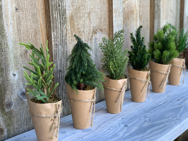 Set of 6 Faux Evergreen Trees