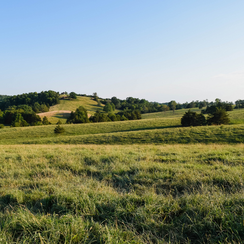 Rolling hills in the Shendandoah Valley of Virginia
