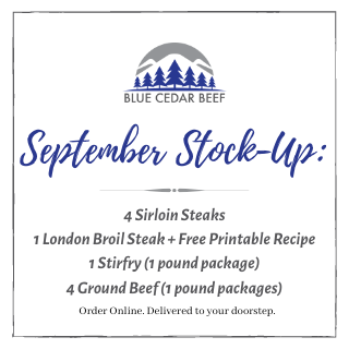 "Weekly Special - ""September Stock-Up"""