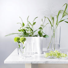 Load image into Gallery viewer, Alvar Aalto vase 120 mm clear