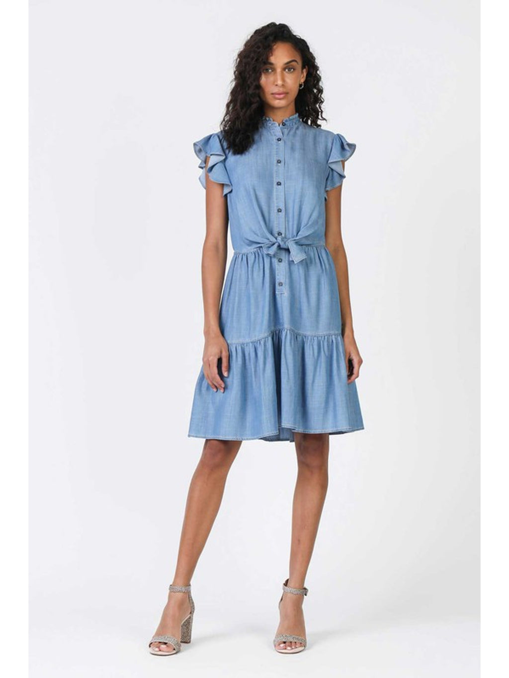 Dani Denim Ruffle Dress