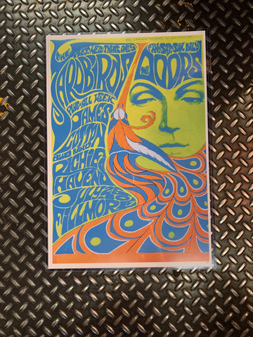 Fresh Prints Posters The Doors At Fillmore Neon Poster