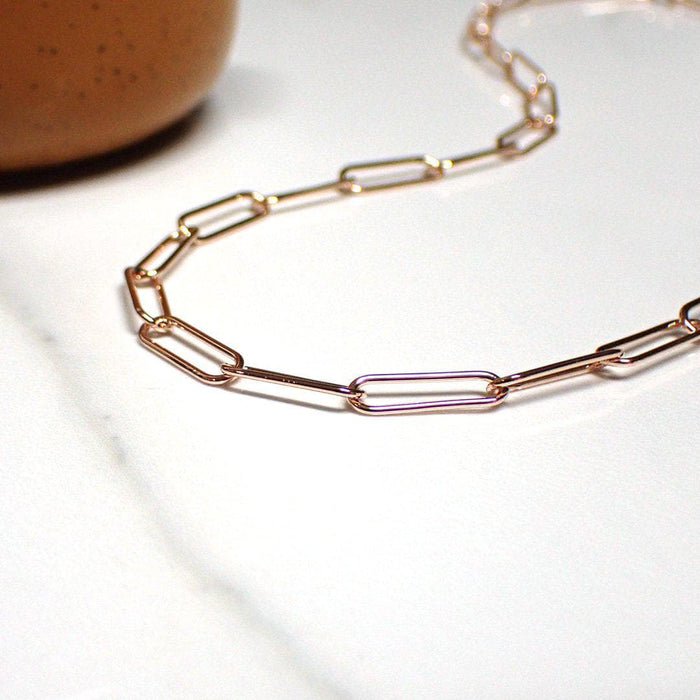 2-Toned Paperclip Necklace