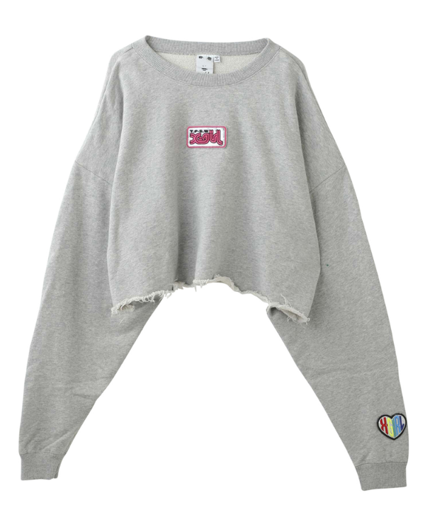 PRISM PATCH CROPPED CREW SWEAT TOP