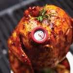 Broil King Mini Meat Thermometers in meat on BBQ