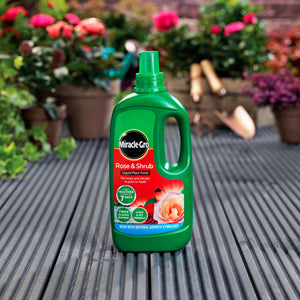 Miracle-Gro Rose & Shrub Concentrate 1L