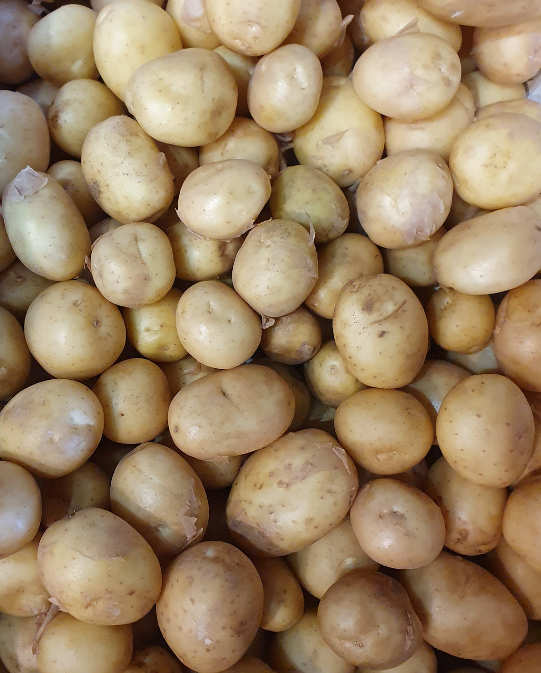 Baby Salad Potato 1.5KG