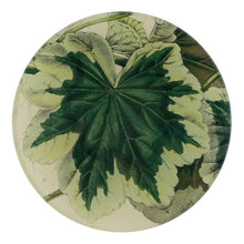"Load image into Gallery viewer, John Derian 4"" Round Plates"