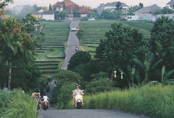 Bali on a Budget: Why Everyone Needs to Go