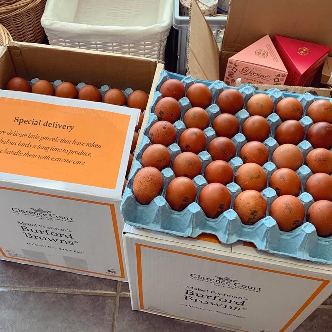 Free Range Medium Eggs