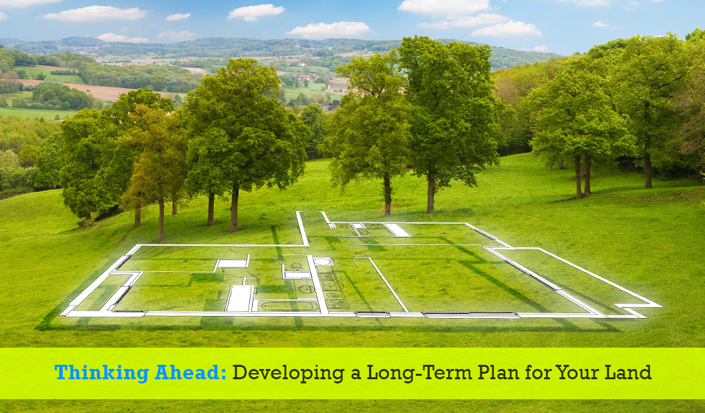 Thinking Ahead- Developing a Long-Term Plan for Your Land