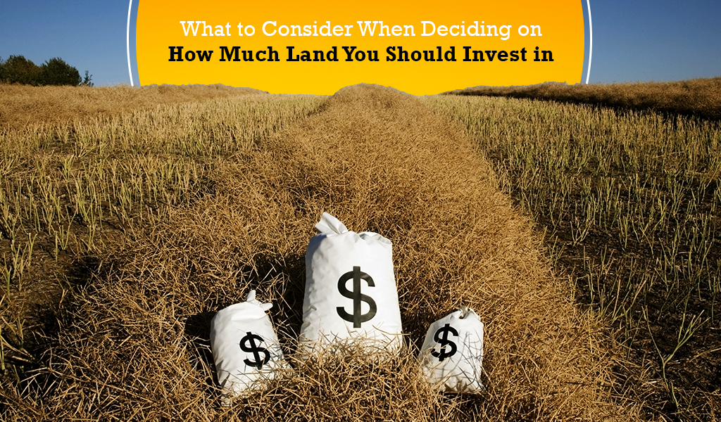 What to Consider When Deciding on How Much Land You Should Invest in
