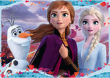 RB03036-1 FROZEN 2 ENCHANTING NEW WORLD 24 PIECE