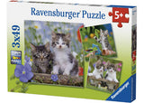 RB08046-5 KITTENS 3X49 PIECES