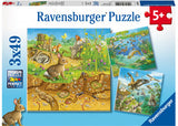 RB08050-2 ANIMALS IN THEIR HABITATS 3X49 PIECES