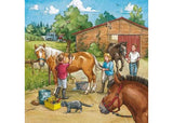 RB09237-6 A DAY WITH HORSES 3 X 49 PIECE