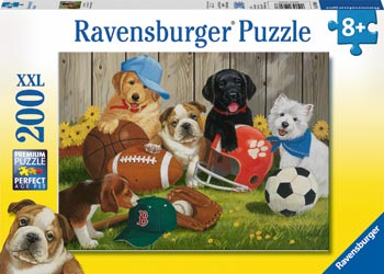 RB12806-8 LETS PLAY BALL 200 PIECE