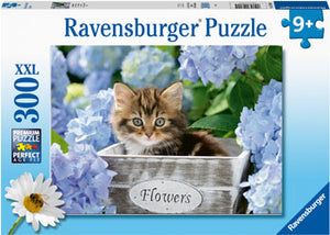 RB12894-5 TORTOISESHELL KITTY 300 PIECE