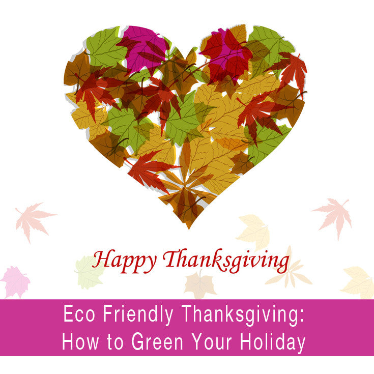 Eco Friendly Thanksgiving: How to Green Your Holiday