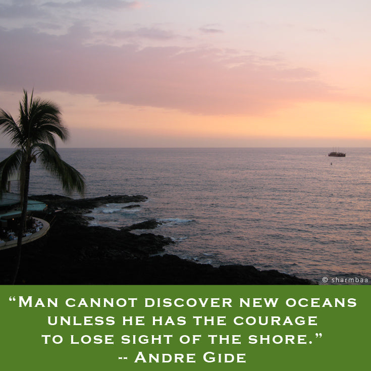 """Man cannot discover new oceans unless he has the courage to lose sight of the shore."" -- Andre Gide"