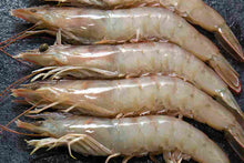 Load image into Gallery viewer, white prawns from spain