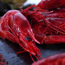 Load image into Gallery viewer, Carabineros (Red King Prawn) - 200g