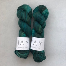 Load image into Gallery viewer, Galway (Merino/Nylon 4ply)