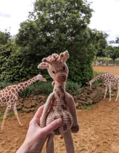 Load image into Gallery viewer, Caitlin the Giraffe