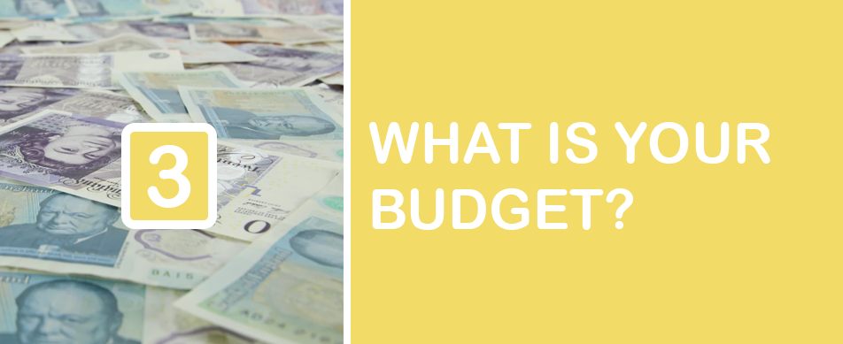 graphic of money, saying what is your budget?