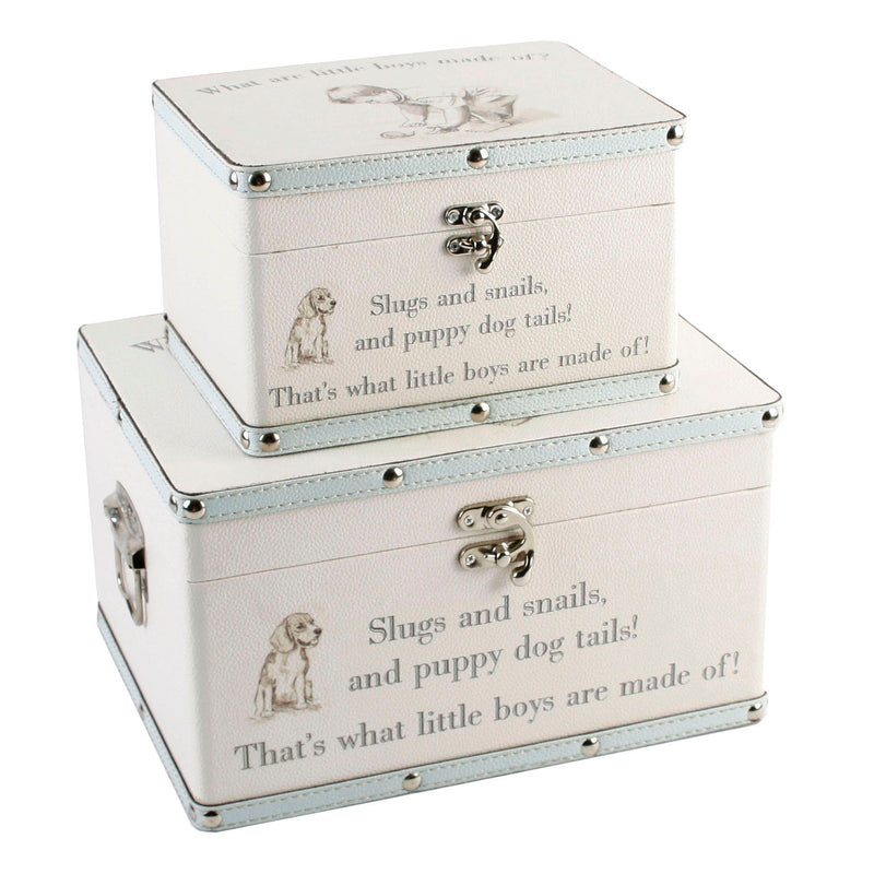 Petit Cheri Little Boys Set of 2 Luggage Boxes