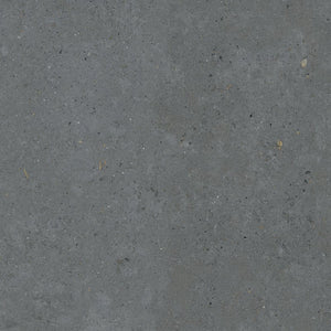 Biophilic Dark Grey Porcelain Paving Slabs