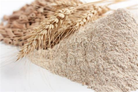 Flour - Strong Wholemeal Organic from Shipton Mill or Doves Farm